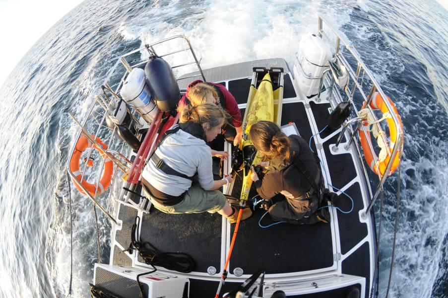 Τα ανεμόπτερα έχουν γίνει μια τακτική πλατφόρμα παρακολούθησης των ωκεανών. Φωτογραφία από SAMS.