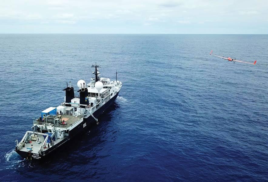 Фото: Океанский институт Шмидта