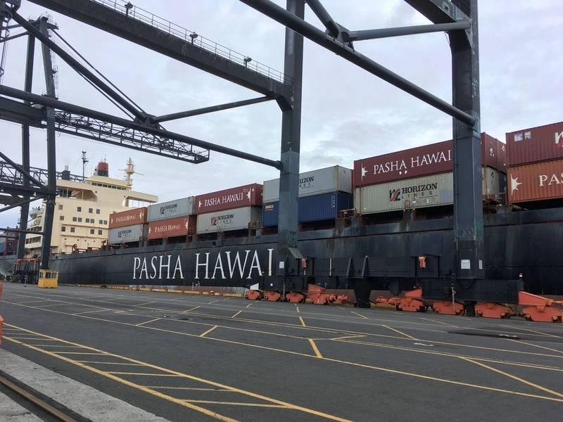 Foto: Pasha Hawaii