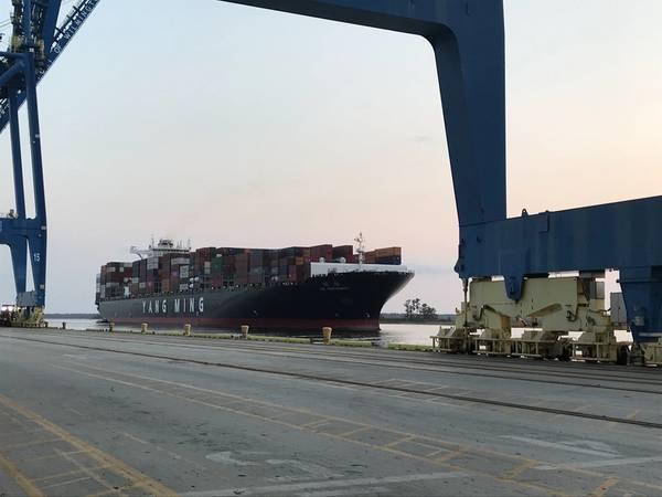 A uniformidade YM chega ao porto de Wilmington (CREDIT NC Ports)