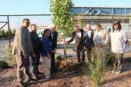 McInnis Cement plants a maple tree with officials and members of community organizations to celebrate the opening of the company's new terminal. From left to right: Ramon Cabral, Deputy District Director; Nick Madio, Bronx Community Board 2; Maria Torres, President & COO, The Point; Laurent Beaudoin, Chairman, McInnis Cement; Jean Moreau, President and CEO, McInnis Cement; Rafael Salamanca, Councilman & Chair of the Land Use Committee; Ralph Acevedo, District Manager, Bronx Community Board 2; an