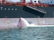 Online surveys are part of IMO study which aims to provide a comprehensive review of the technical standards and approval testing procedures in the Guidelines for approval of ballast water management systems (G8). (Photo: IMO)