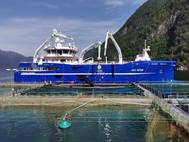 Crew sometimes step off a vessel to work on a fish farm's structure (Photo courtesy DESS Aqua)
