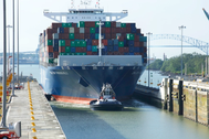 The CMA CGM Theodore Roosevelt transiting the Cocoli locks (Photo: ACP)
