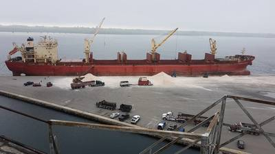File photo: The Federal Schelde dropping off a load of salt at the Port of Johnstown in 2019. (Photo: Port of Johnstown)
