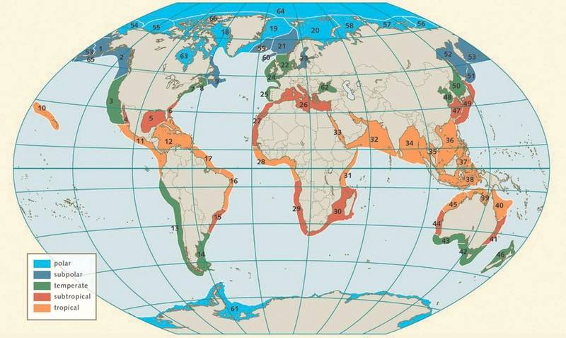 Figure 1. The nearcoastal areas of the world's oceans have been classed into 66 large, transnational marine ecosystems, known as the large marine ecosystems (LMEs). Taken from World Ocean Review Living with the Oceans. 5 Coasts – 2017. Image: The Author