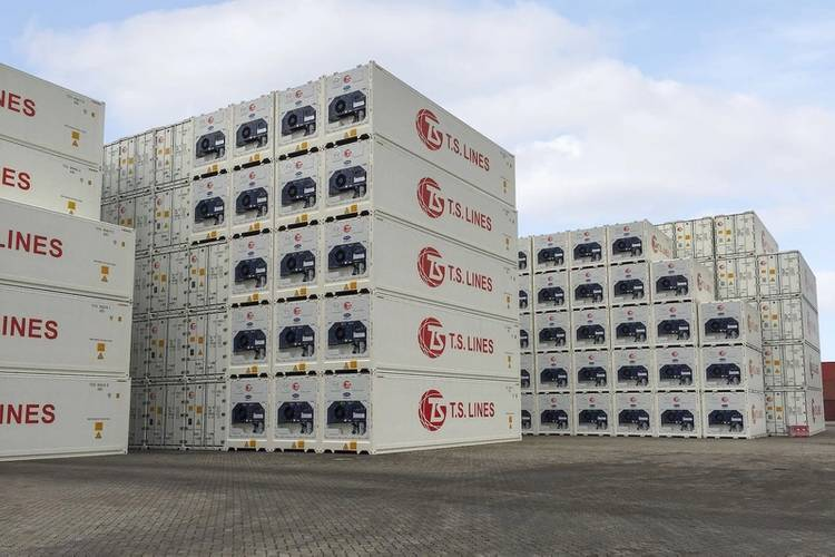 File Image: Stacked Reefer containers (Credit: Transicold)