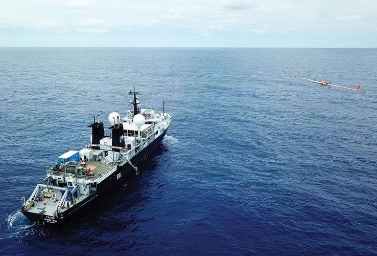 Photo: Schmidt Ocean Institute